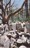 Marché de Maroua