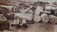 Bois de la Côte d'Ivoire à Grand Bassam. – « On parlait aujourd'hui des bois de la Côte d'Ivoire et l'on déplorait que les ébénistes français se servissent si peu des produits de nos colonies. Je citai Sue et Mare me disant que, quand ils avaient acheté en France une certaine qualité de bois exotiques, ils n'étaient jamais sûrs de retrouver ensuite la même, tant nos marchands en gros achètent à tort et à travers, au hasard des marchés. […] La baisse du franc du franc a mis nos acajous à des pris si peu élevés que plusieurs maisons américaines se sont installées à Grand-Bassam. Elles envoient nos bois précieux aux Etats-Unis d'où ils nous reviennent en France sous le nom d'acajou d'Amérique ». Source : Morand, Paul, A.O.F. de Paris à Tombouctou, Paris, Flammarion, 1928.