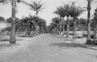 Abidjan, l'avenue de la Résidence