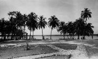 La Lagune à Grand Lahou – La ville de Grand Lahou est reliée hebdomadairement à Abidjan par un service fluvial lagunaire (Guid'AOF, édition 1948).