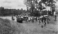 Crossing the river at Nsawam. – Il s'agit ici de sacs de fèves de cacao transportés vers Accra, passant sur des pirogues une petite rivière nommée Densu. La localité de Nsawam est le point intermédiaire du déploiement du chemin de fer entre Accra et Kumasi. Elle fut reliée à la capitale en 1911, tandis que le second tronçon devait s'achever en 1915. Source photo : Knapp, Arthur, Cocoa and chocolate - Their History from Plantation to Consumer, London, Chapman and Hall, 1920.