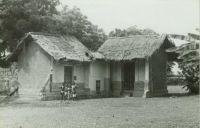Primitive cottage natives