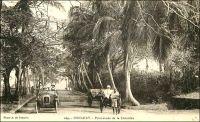 Conakry, promenade de la Corniche. – « La ville donne l'impression au visiteur de quelque cité du district des lacs d'Angleterre, plutôt que celle d'une escale de la côte d'Afrique. La vue de la ville et des îles voisines est merveilleuse de beauté tropicale. Conakry est tracée selon le plan habituel des villes coloniales françaises : rues à angles droits, squares et jardins bien dessinés. Un boulevard extérieur, macadamisé, bordé de palmiers, l'encercle. Je crois que la raison poussant les Français à bâtir leurs villes tropicales de façon si pratique s'explique par leur désir de s'y sentir « at home ». La demeure qu'ils s'y aménagent leur servira pendant des années de résidence fixe. » Sources : écrits d'un « voyageur anglais » qui a vécu à Lagos, Onitsha, Accra et Sekondi paru dans le Bulletin d'information du gouvernement général de l'Afrique occidentale française, cité dans Ricord, M., France noire, Marseille, Sud-éditions, 1939.