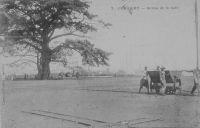 Conakry, entrée de la rade