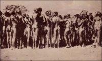 Chez les Lobis, groupe de femmes. – « Les femmes [des tribus Lobis rencontrées par l'auteur les jours de marché à Gaoua] n'ont pour tout costume que la ceinture de ficelles, en brin de « bemwos », dont les extrémités leur pendent jusqu'aux genoux. Les femmes mariées portent, en outre, comme chez les Bobos, deux bouquets de feuilles, qu'elles s'appliquent avec beaucoup de pudeur lorsqu'elles se baissent. La plupart ont les lèvres déformées par l'affreux labret de quartz, de fer, d'os ou de bois, et des scarifications en étoile leur ornent le nombril. Leurs traits sont en général assez fins et l'habitude, commune à toutes les femmes noires, de porter les fardeaux sur la tête donne à leur démarche et à leur port l'élégance et la noblesse que l'on remarque, pour la même raison, chez nos Arlésiennes » (1). Carte postale signée « Cliché Mission d'Art Colonial ». Source : Soubrier, Jacques, Savanes et Forêts, Paris, J. Susse, 1944.