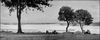 Le confluent du Logone et du Chari, vu de Fort-Lamy. – « Fort-Lamy me déçut en partie, malgré tout son pittoresque. Le débarcadère est aménagé sur une berge assez haute, mais rongée par le flot et par les transbordements ; les terres sont retenues grossièrement par des piquets reliés horizontalement par des troncs d'arbres ; dans l'eau, autour du  bateau, une foule grouillante de femmes et d'enfants se baigne et se lave au milieu de cris perçants ; des pirogues accostent, el d'autres démarrent pour traverser le fleuve, ou se diriger vers le Logone, dont on voit le confluent quelque peu en aval ». Source : Abou-Digu'en, Mon voyage au Soudan tchadien, Paris, éditions Pierre Roger, 1929.