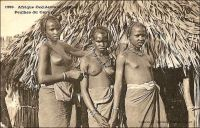 Peulhes du Cayor. – Eleveurs nomades, les Peuhls sont présents dans presque tout le Sénégal où ils représentent, quand les autorités coloniales s'avisent de recenser les ethnies, le troisième groupe par le nombre. En pays wolof, comme dans le Cayor, ils s'emploient alors en tant que gardiens de troupeaux. « La réputation de beauté des femmes peul est souvent justifiée. Elles se noircissent les yeux et se teignent au henné les ongles et les paumes. L'habitude ancienne était de leur tatouer les lèvres en bleu » (1). « Oppa, jeune Toucouleur, passe pour être jolie. Ses traits représentent fidèlement les caractères de sa race formée d'un croisement de Peulhs et de Bamabaras. […] elle doit aux premiers, Berbères de l'antique Egypte, l'ovale de son visage, ses lèvres relativement minces, son nez à tendances aquilines, ses attaches assez fines » (2). - Cette carte postale fait partie du travail du célèbre photographe et éditeur dakarois Edmond Fortier (1862-1928) à qui l'on doit une somme importante de clichés sur l'Afrique de l'Ouest en général et sur le Sénégal en particulier ; il a publié en tout 3300 clichés originaux. M. Fortier tenait boutique et vivait avec ses deux filles blondes et son boy Seydou Traoré, à l'angle de la rue Dagorne et du boulevard Pinet-Laprade, tout près du marché Kermel.  Sources : (1) Deschamps, H., Le Sénégal et la Gambie, Paris, PUF, 1964. (2) Baratier, Col., A travers l'Afrique, Paris, Arthème Fayard, 1908.