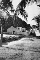 Gorée, la moquée vers 1955