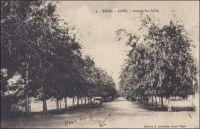 Lomé, Avenue des Alliés. - Il s'agit de la voie connue depuis plusieurs décennies sous le nom de «rue du 24 janvier», en référence à un accident d'avion survenu à cette date en 1974 dans la localité de Sarakawa, à proximité du village natal du président Eyadéma, et qui faillit coûter la vie au dirigeant togolais. La catastrophe, pourtant banale d'un point de vue aéronautique – leDC3 présidentiel avait subi un décrochage latéral tandis qu'il manœuvrait à basse altitude pour trouver la piste d'atterrissage dans une faible visibilité liée à l'harmattan-, fut érigée en «odieux attentat» par la propagande du régime. Selon cette mythologie politique développée alors, il s'agissait là d'un «acte ignoble de l'impérialisme organisé par la haute finance internationale» et visant à liquider le chef de l'État pour  s'emparer des ressources naturelles du pays - un gisement de phosphates en l'occurrence. Les bénéfices de cette mystification furent multiples : elle permit de mettre légitimement la main sur l'entreprise minière convoitée depuis un certain temps -elle fut promptement nationalisée-, mais surtout elle conféra au président un statut symbolique de sur-homme quasi immortel et de leader nationaliste visé par les puissances néfastes de la finance internationale (1). La rue des Alliés, ou avenue des Alliés selon les époques et les sources, croise les voies ferrées au niveau de la gare et la rue de la Libération au niveau où fut créée en 1934 la Place des fêtes de Lomé avec son kiosque à musique (2). Le 25 janvier 1993, ce lieu, devenu   «Fréau-jardin» ou Place de la Libération, devait être le théâtre de la sanglante répression d'une manifestation de l'opposite par les militaires fidèles au Général Eyadéma. Les victimes furent nombreuses et la répression aveugle des jours suivants provoqua l'exil de plusieurs centaines de milliers de Togolais dans les pays limitrophes.  Le secrétaire d'Etat française à la coopération et le ministre allemand des Affaires étrangères, tous deux