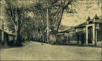 Porto Novo, l'avenue Gabriel. – Dès 1893, les autorités se penchent sur le choix du site idéal pour placer la capitale du Dahomey. Trois villes, Ouidah, Porto Novo et la modeste agglomération de Cotonou, sont en lisse. La première, quoique abritant l'état major du corps expéditionnaire chargé de la pacification du pays après la chute du roi Béhanzin, fut rapidement écartée. Porto Novo, pourtant tenue pour insalubre, fut finalement retenue. Mais progressivement Cotonou, plus centrale, rivalisa avec Porto Novo. La mise en service du chemin de fer reliant les deux villes, opérationnel en 1929, puis du pont de Cotonou en 1930, et enfin du pont de Porto Novo en 1938, scella le déclin progressif de la capitale. Le transfert des activités économiques puis des fonctions politiques vers Cotonou était amorcé; il ne s'interrompra plus.