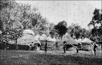 En hamac dans le Dahomey, en 1900 (le général Gouraud). – Avant la construction du chemin de fer au Dahomey en1904,  le voyageur se déplaçait en combinant la navigation fluviale et le portage en hamac. Ainsi, le général Gouraud, qui devait fonder peu après la ville de Niamey, passa par le Dahomey pour se rendre à Zinder. Débarquant du navire Le Tibet au wharf de « Kotonou » le 27 octobre 1900, il quitte la côte le 4 novembre, traversant le Bas-Dahomey en remontant l'Ouémé à bord de l'Onyx, « une petite canonnière à aubes ». Le terminus de la navigation, Sagon, est atteint en journée. Là, des « hamacaires » attendent les voyageurs sur la grève pour les emporter, eux et leur nombreux bagages, jusqu'à Zagnamado, ancienne résidence de campagne de Béhanzin, puis jusqu'à Parakou où ils intègrent un convoi comptant 27 Européens et 500 porteurs. - « Le soleil tape dur ; mas on nous a donné un hamac pour nos courses, hamac supporté par un long et fort bâton et porté sur la têt par deux hommes vigoureux, mode de transport en usage dans tout le Dahomey où les chevaux ne vivent pas. […] Le hamac est un mode de transport pratique pour les courses en ville, il l'est beaucoup moins pour les longues étapes. Le voyageur est placé très bas, giflé par les hautes herbes, il ne voit rien, et quand il y a un piquet au milieu de la route, il le reçoit dans les reins ». Source : Gouraud, Gal, Zinder Tchad, Paris, Plon, 1944.